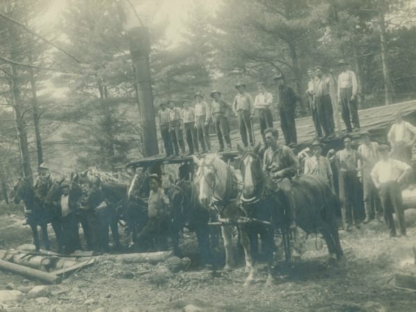 Loggers with draft horses near Paul Smith's Hotel in Paul Smiths