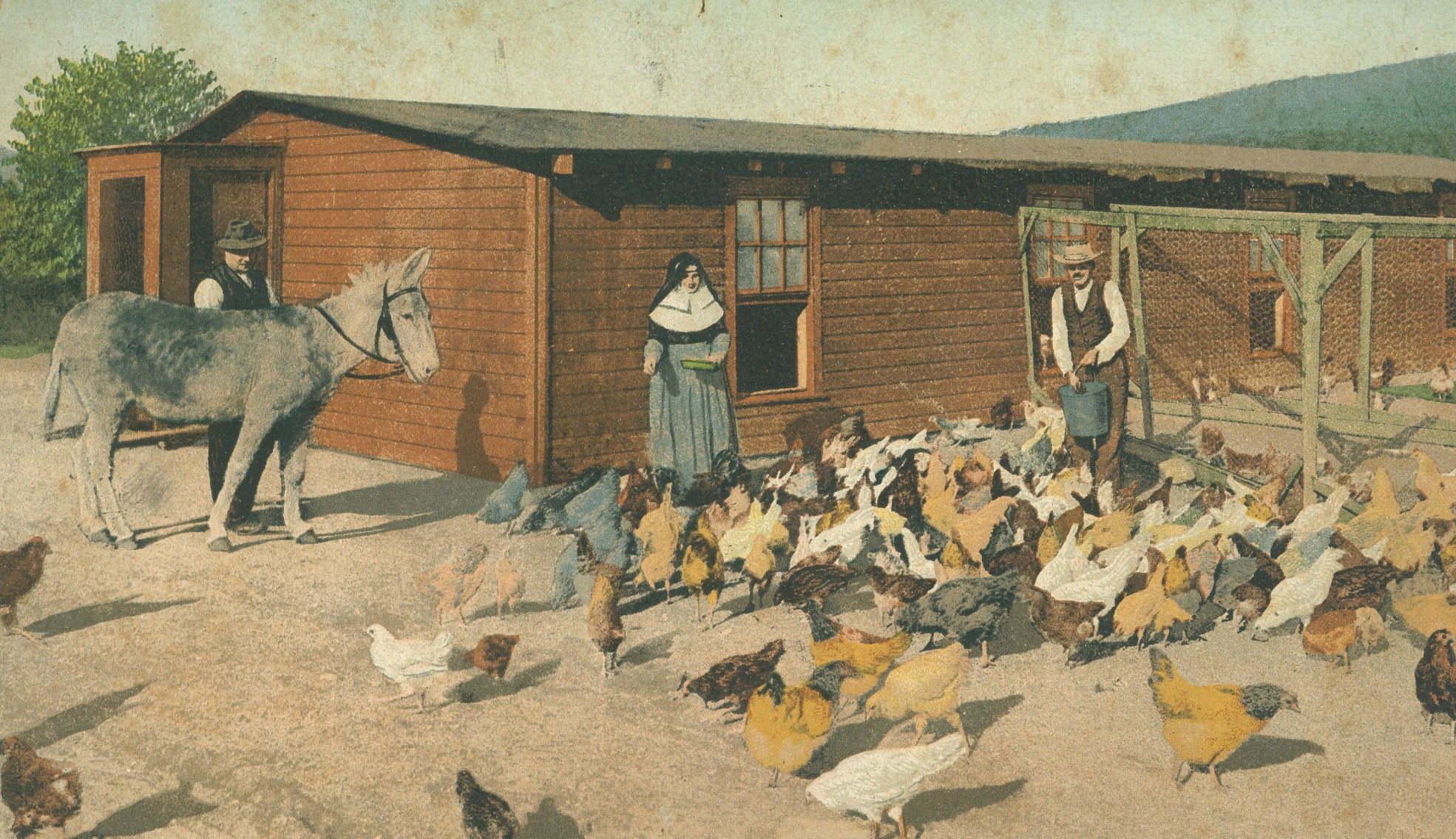 Men and nun feed chickens in the yard at Gabriels Sanatorium