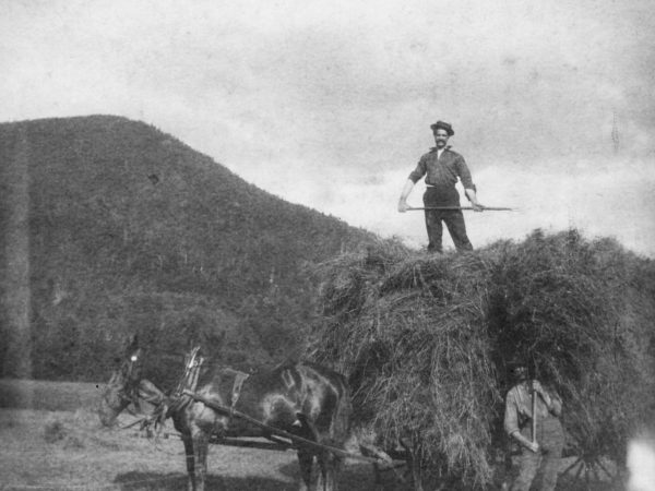 George Dibble on a load of hay in Keene Valley