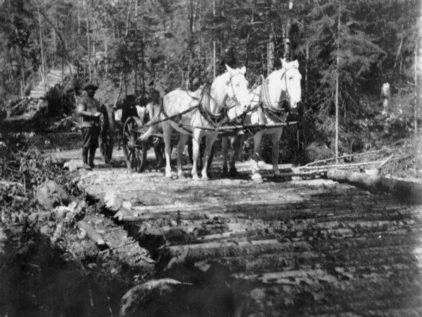 Lumbering team on corduroy road in Keene Valley