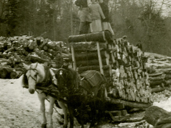 A load of pulpwood on a horse-drawn sled in Keene Valley