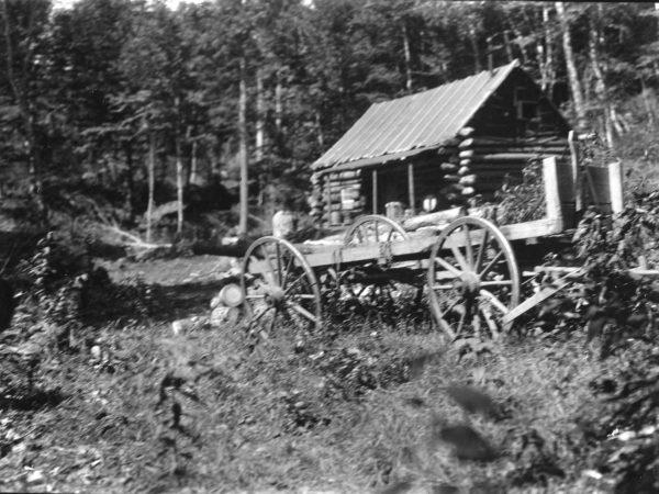 Wagon and camp at Hulls Lumber Camp