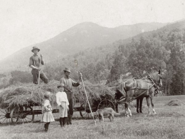 Haying at the Dibble farm in Keene Valley