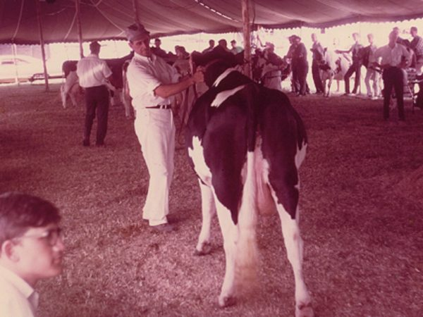 Robert Thompson with a cow at the Gouverneur Fair Show