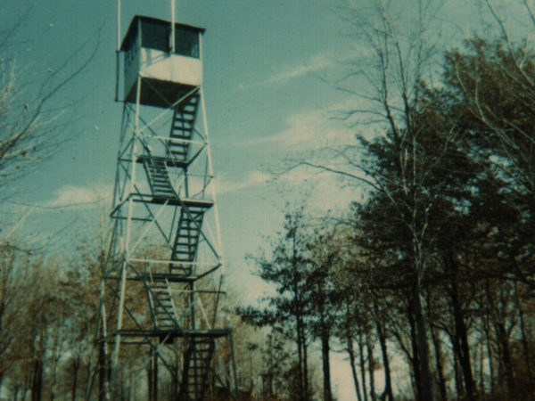 View of the fire tower on Catamount Mountain