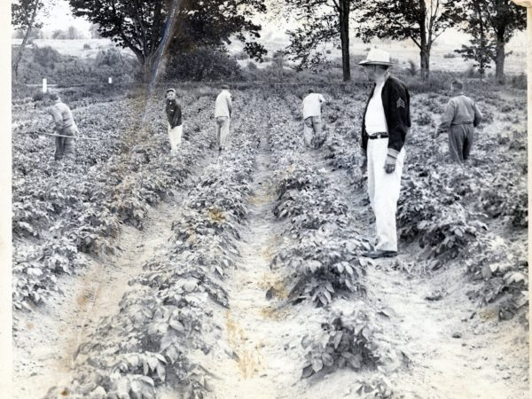 Prisoners working in the vegetable garden of the County Poor House in Canton