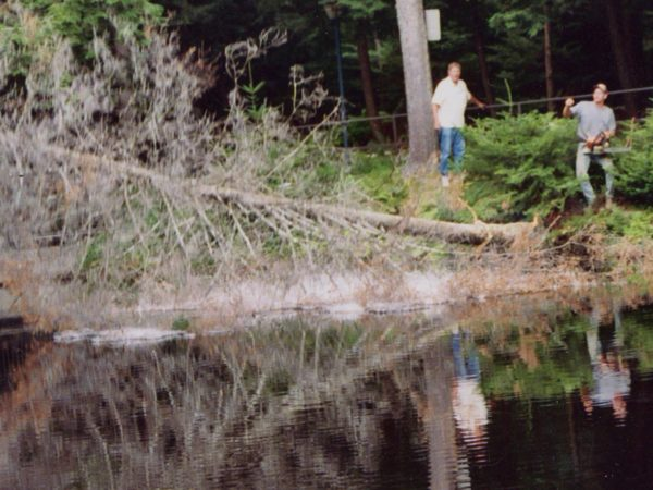 Removing dead trees around Cold Pond in Colton