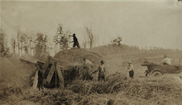 Threshing grain on the Oval Wood Dish farm in Tupper Lake