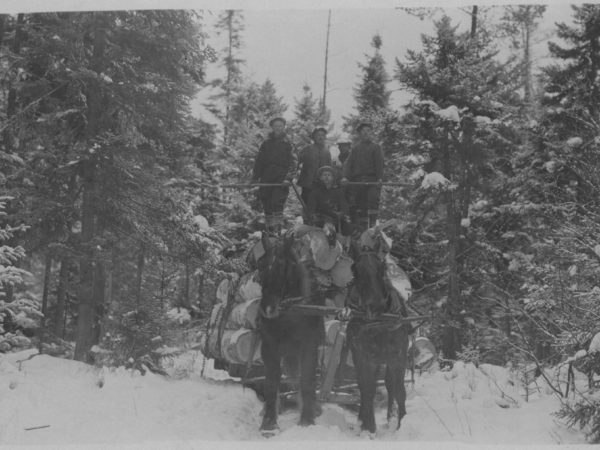 Five lumberjacks atop a sleigh full of logs in Tupper Lake