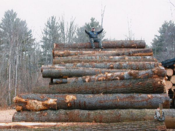 Logger sitting on a huge pile of logs in Elizabethtown