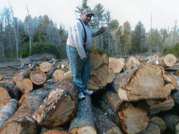 Jack Pulsifer on a load of maple logs in Elizabethtown