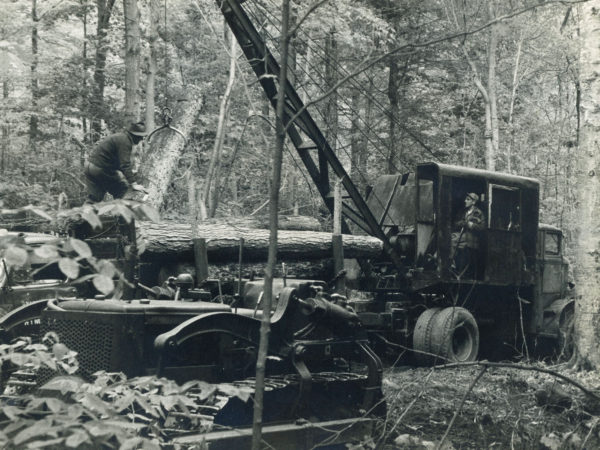 Loading Logs for the Triangle Lumber Company in Onchiota