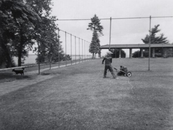 Boy using push mower on lawn