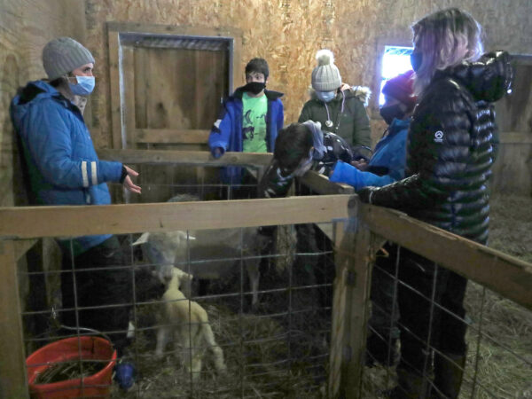 Barn manager and students with ewe and lambs